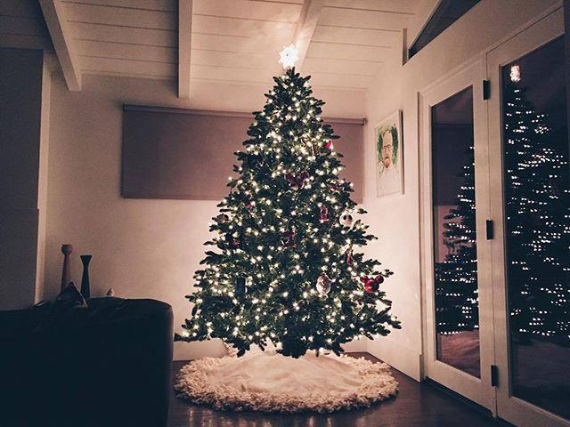 22 days till Christmas day 🎄🎄🎄🎄🎄 #christmas #christmastime #december #happyholidays #holidayseason #merrychristmas #2016