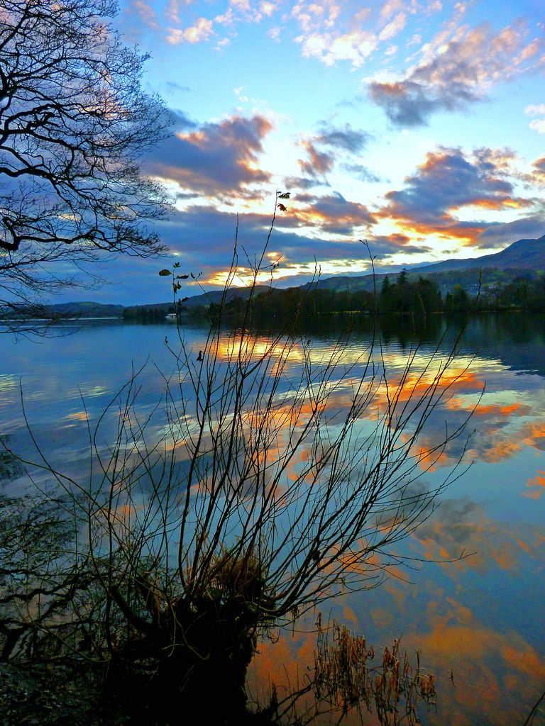 Sunset Through The Trees Coniston Water Lake District Lake District Lake Photography Scenery