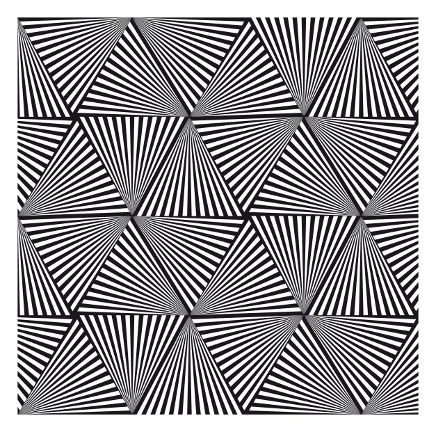 optical illusion 3d dragon pdf