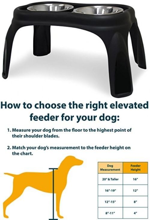 Dishes Feeders And Fountains 177789 Elevated Dog Cat Food Water