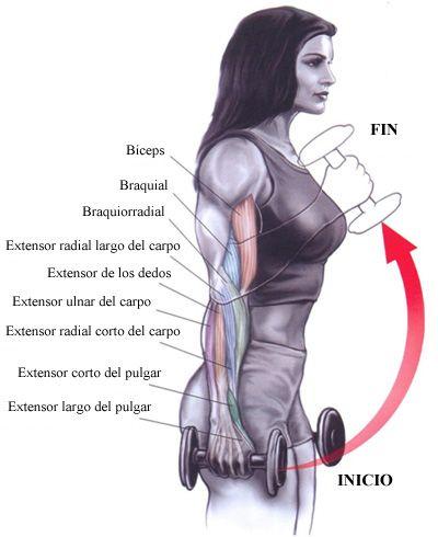 rutina de ejercicios con mancuernas de 5 kg