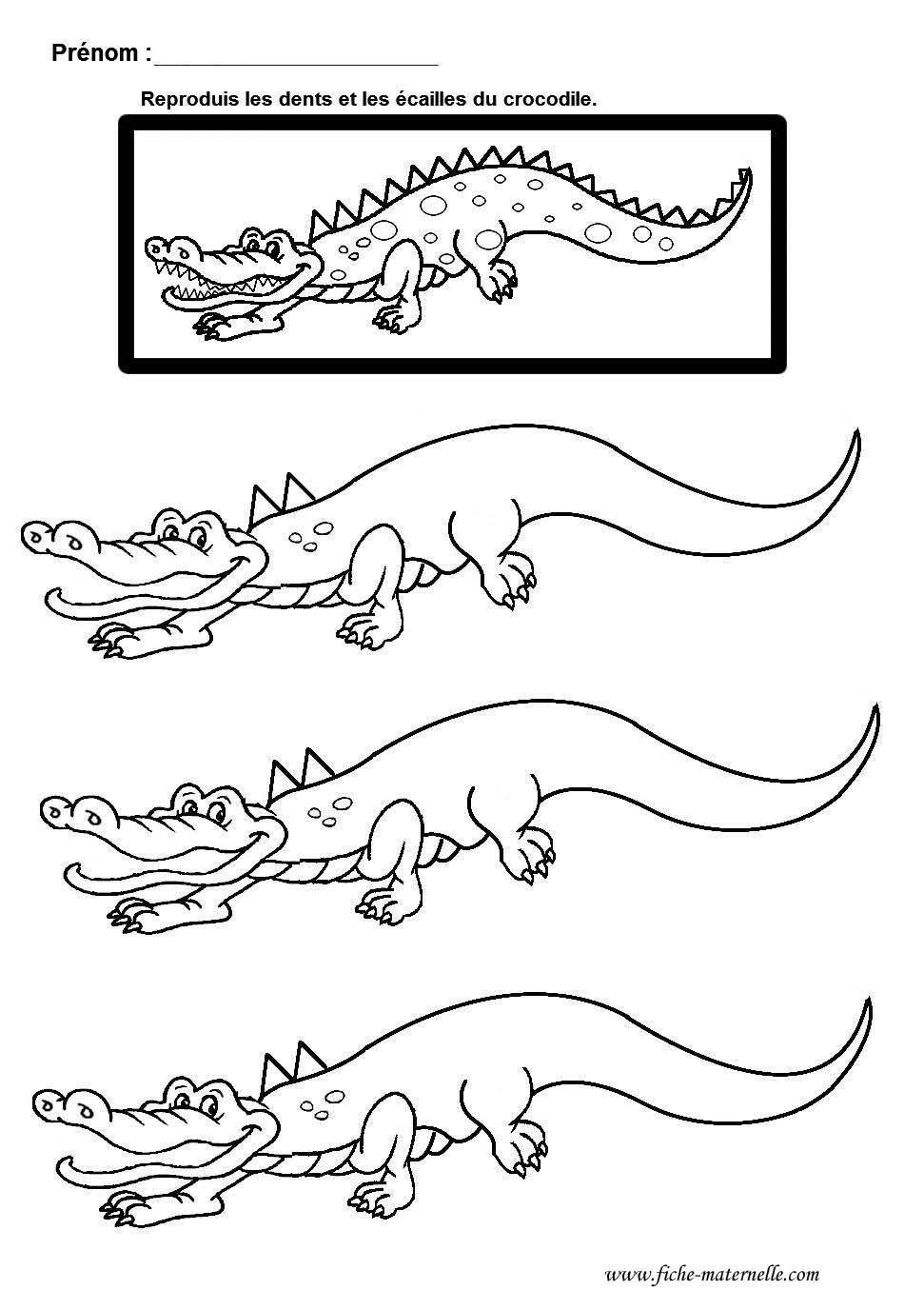 Coloriage En Ligne Grande Section.Graphisme Gs Et Ms Lignes Brisees En Maternelle Le Crocodile