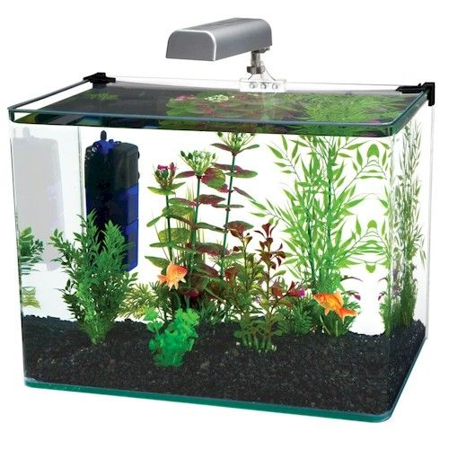 We offer a variety of desk top / smaller aquariums along