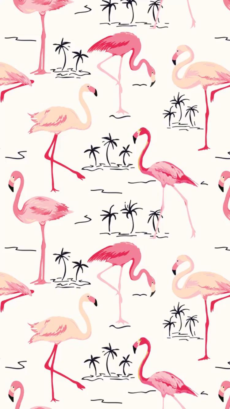 Background flamingo flamingos iphone wallpaper wallpaper -  Flamingo Bird Retro Background Iphone Case Skin By Anna Sivak