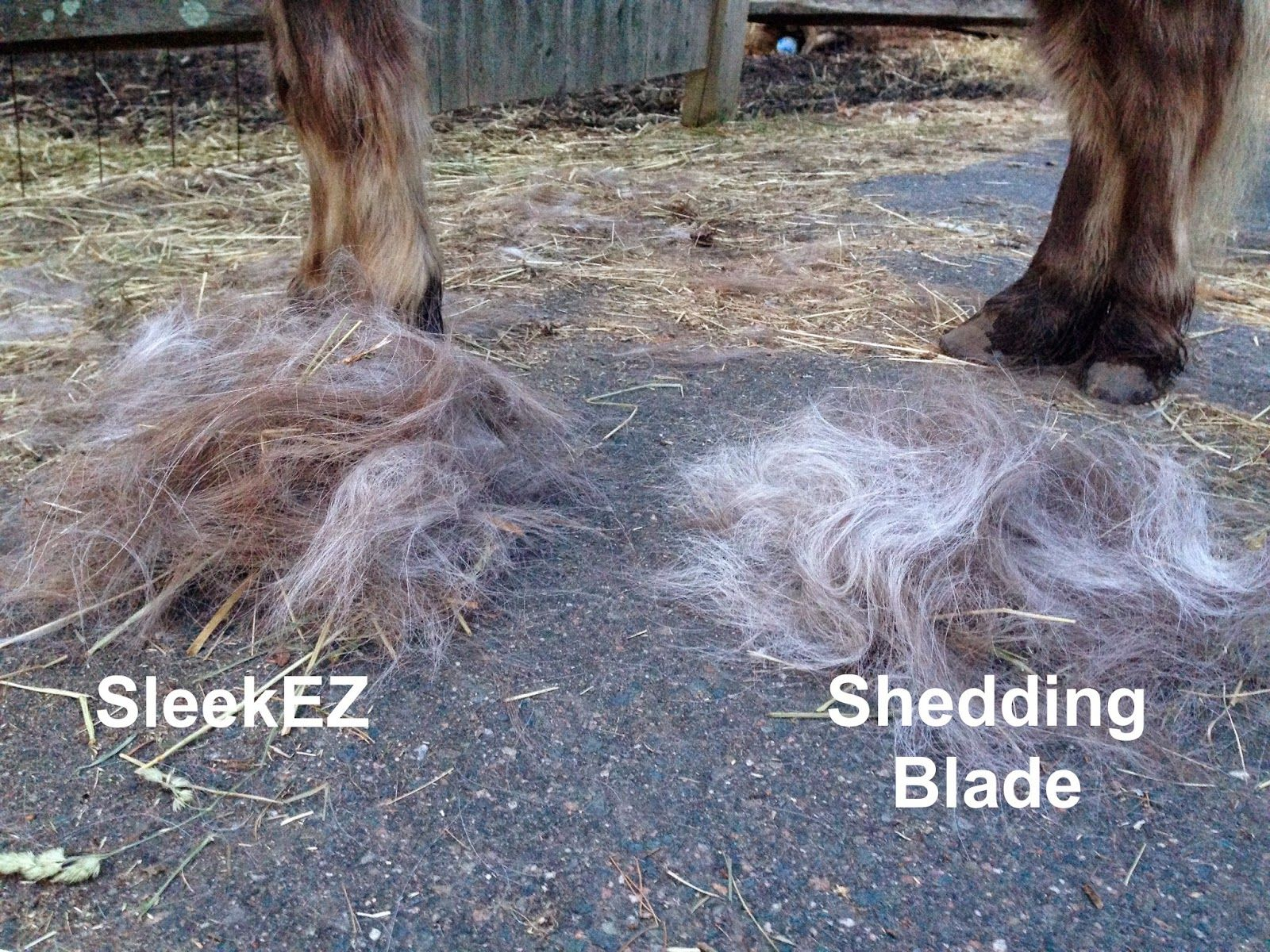 Product Review SleekEZ Grooming Blade Grooming, Blade, Pets