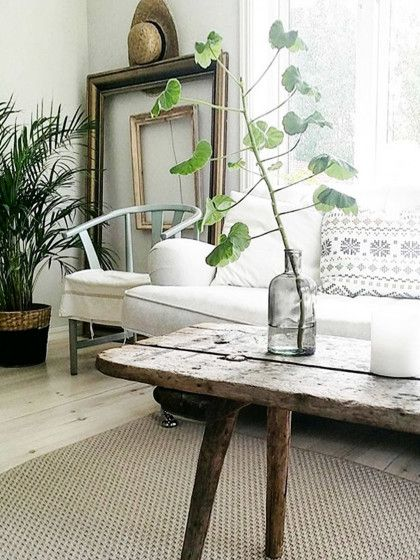 Hol dir etwas Natur in dein Wohnzimmer mit Holzmöbeln und Pflanzen - pflanzen für wohnzimmer