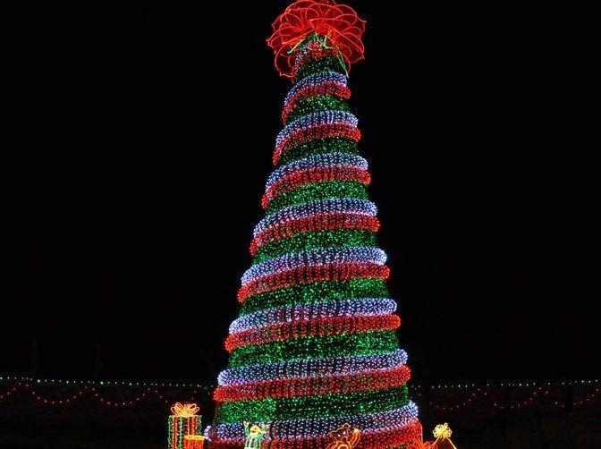 Christmas Lights at Garvan Gardens I love the tour Favorite
