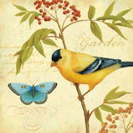 Garden Passion II Canvas Art - Daphne Brissonnet (24 x 24)