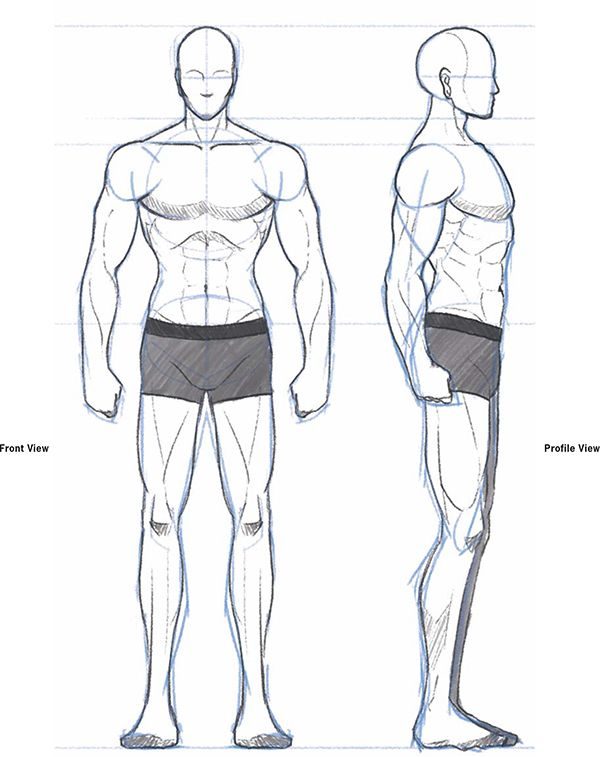 How To Draw Anime Body With Tutorial For Drawing Male Manga Bodies How To Draw Step By Step Drawing Tutorials Male Manga Drawing Anime Bodies Guy Drawing