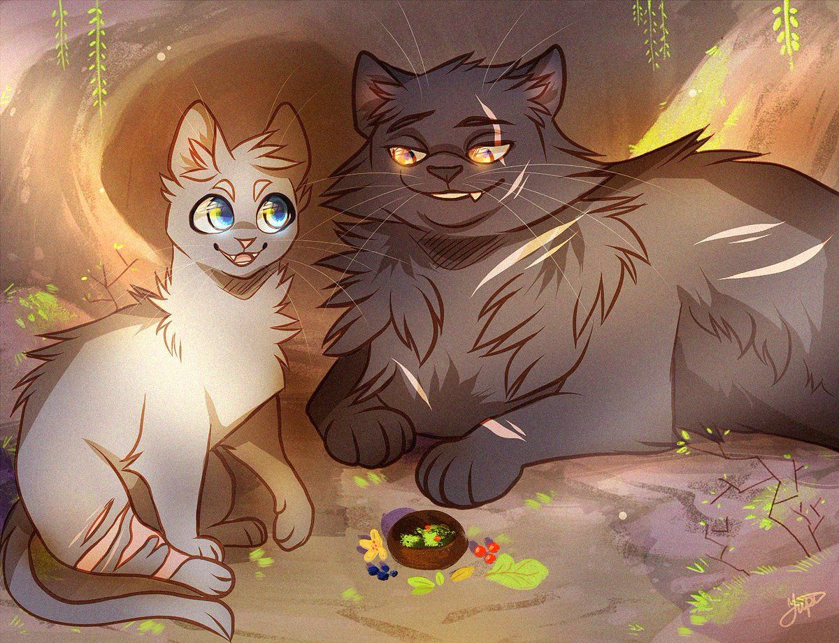 Aro Arodote Twitter Cinderpelt And Yellowfang With