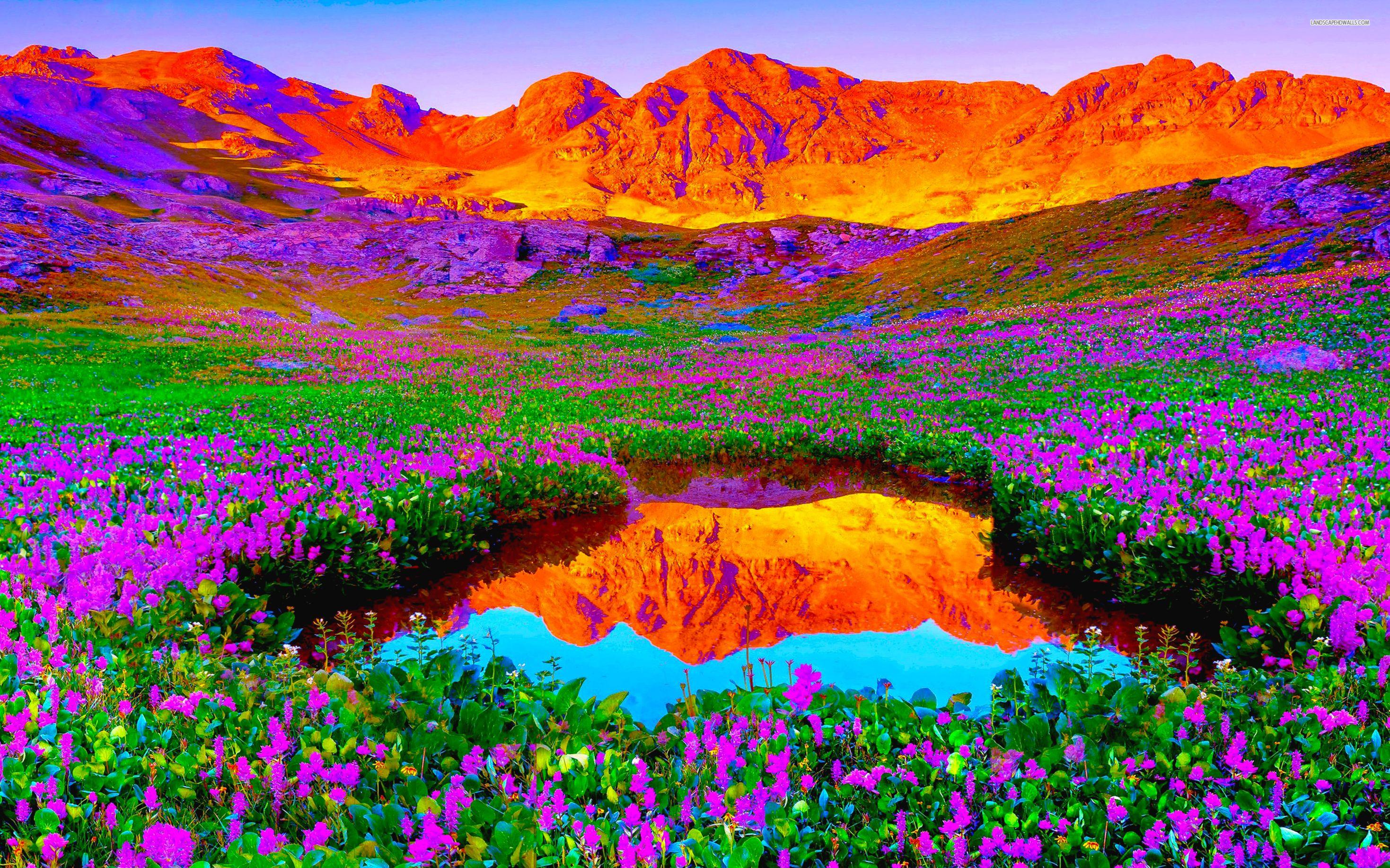vibrant desktop backgrounds - google