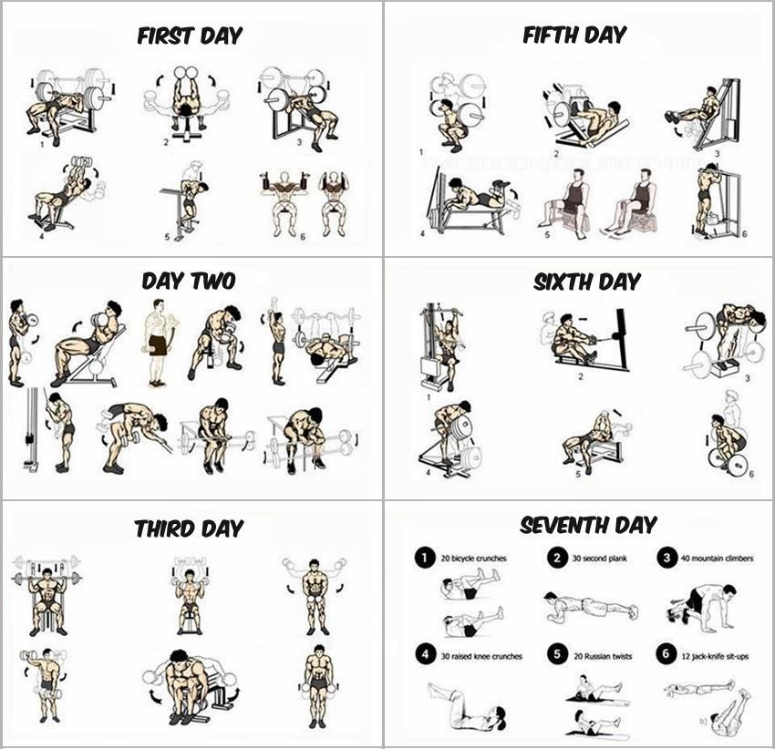 1 This Insanity Workout Calendar Takes 6 Days And Each Day Is Dedicated For One Group Of Muscles They Are Divided As The Followingchest MusclesThe First