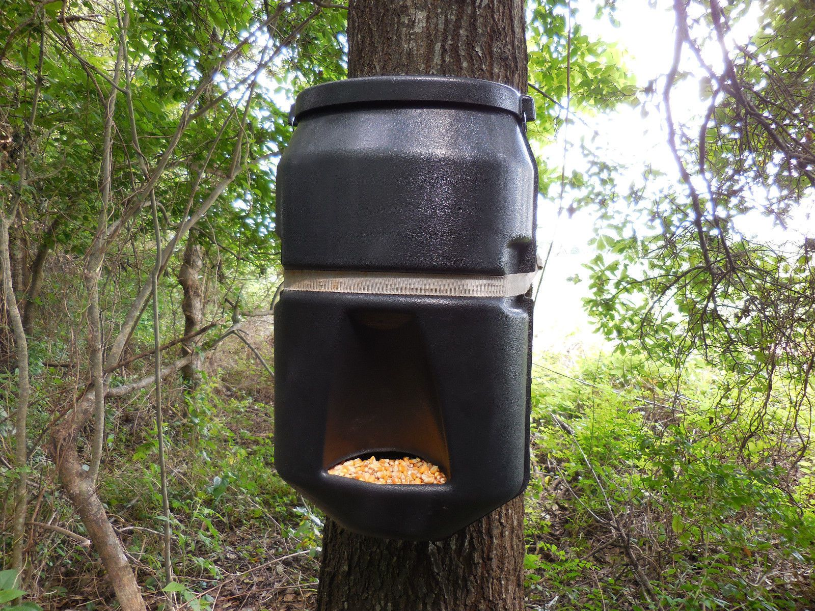 deer watch feeders gal protein youtube feeder drum icbj homemade diy pellet