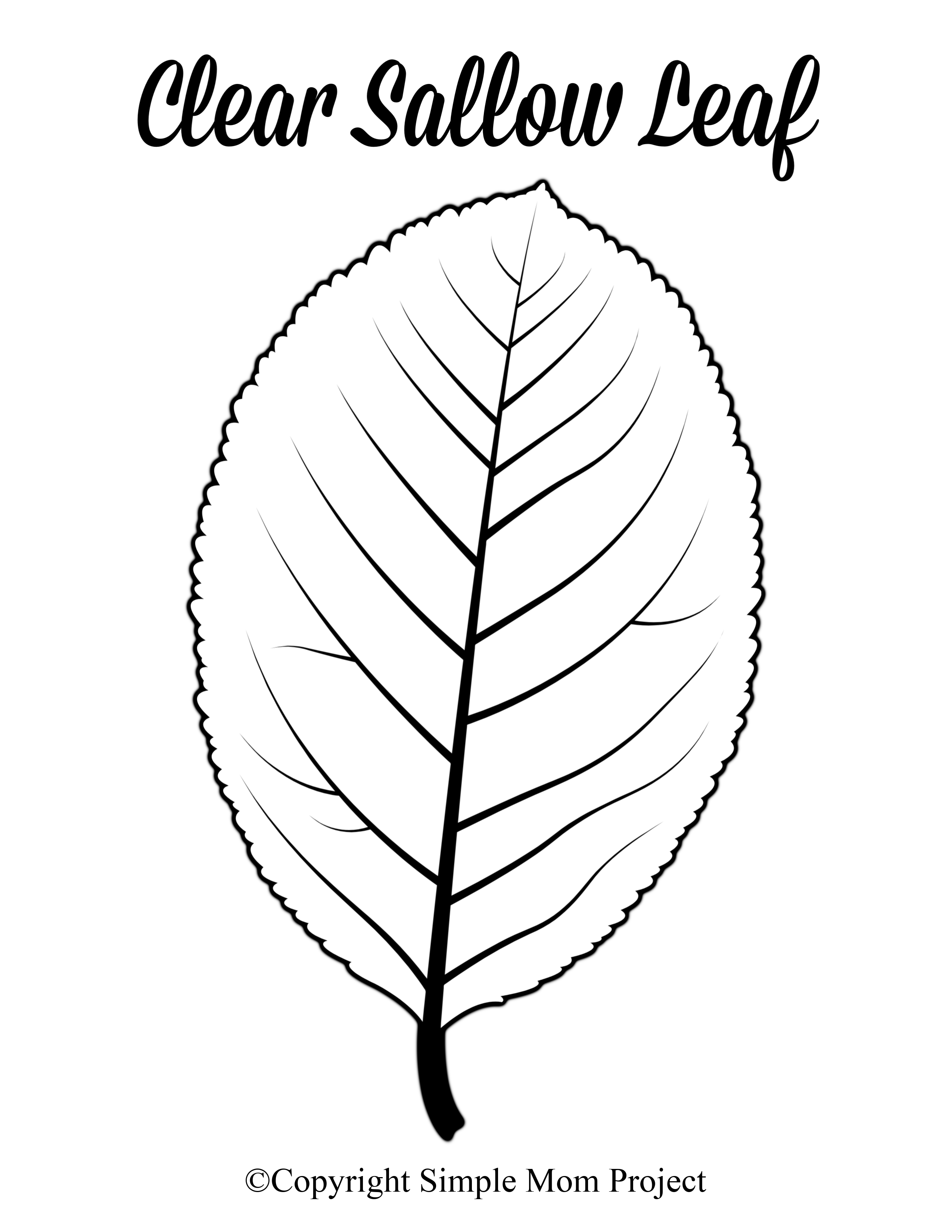 Free Printable Large Leaf Templates, Stencils and Patterns - Simple Mom  Project | Leaf template, Leaf template printable, Leaf coloring page