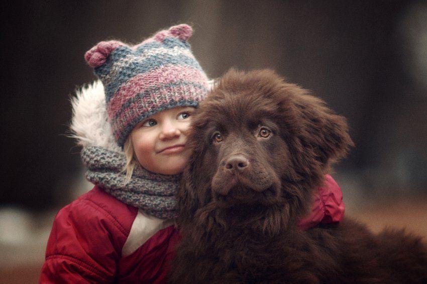Kuscheln Erlaubt Alice Und Der Neufundlander Welpe Chocolate Hunde Und Kinder Grosse Hunde Susse Tiere