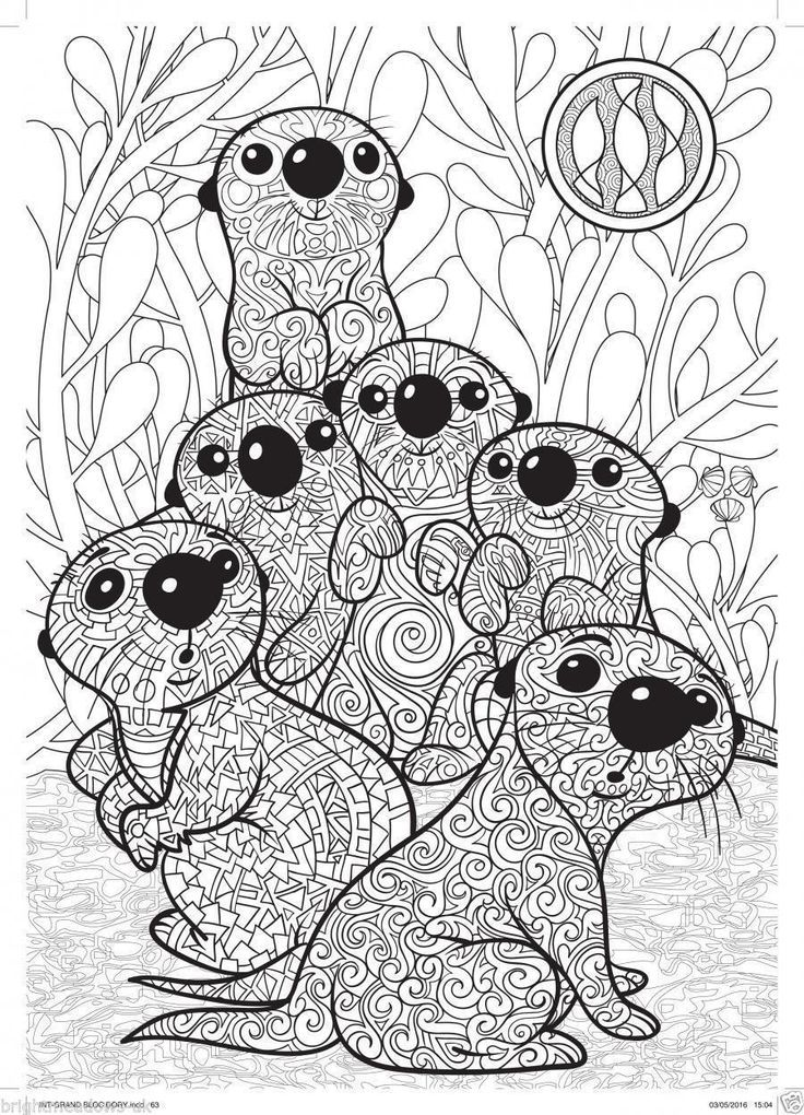 Otters | Zentangles, mandala\'s and colouring for adults | Pinterest ...