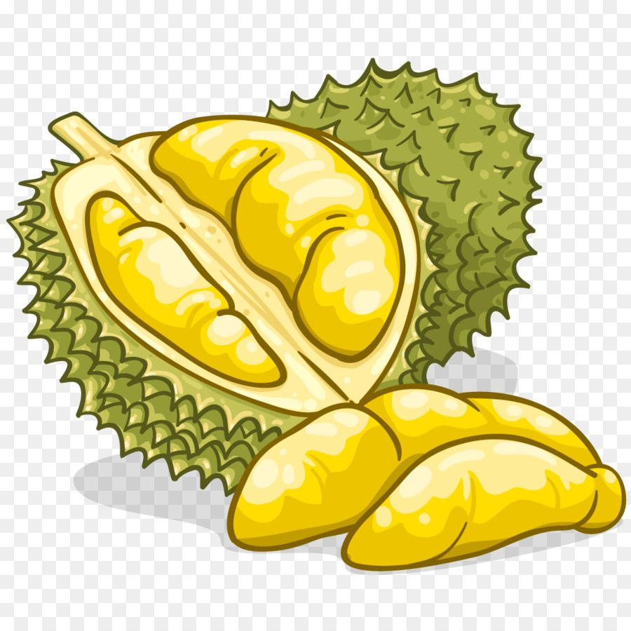 durian food flavor fruit clip art durian fruit cartoon durian fruits drawing durian food flavor fruit clip art