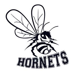 Hornets Mascot Temporary Tattoo (2\