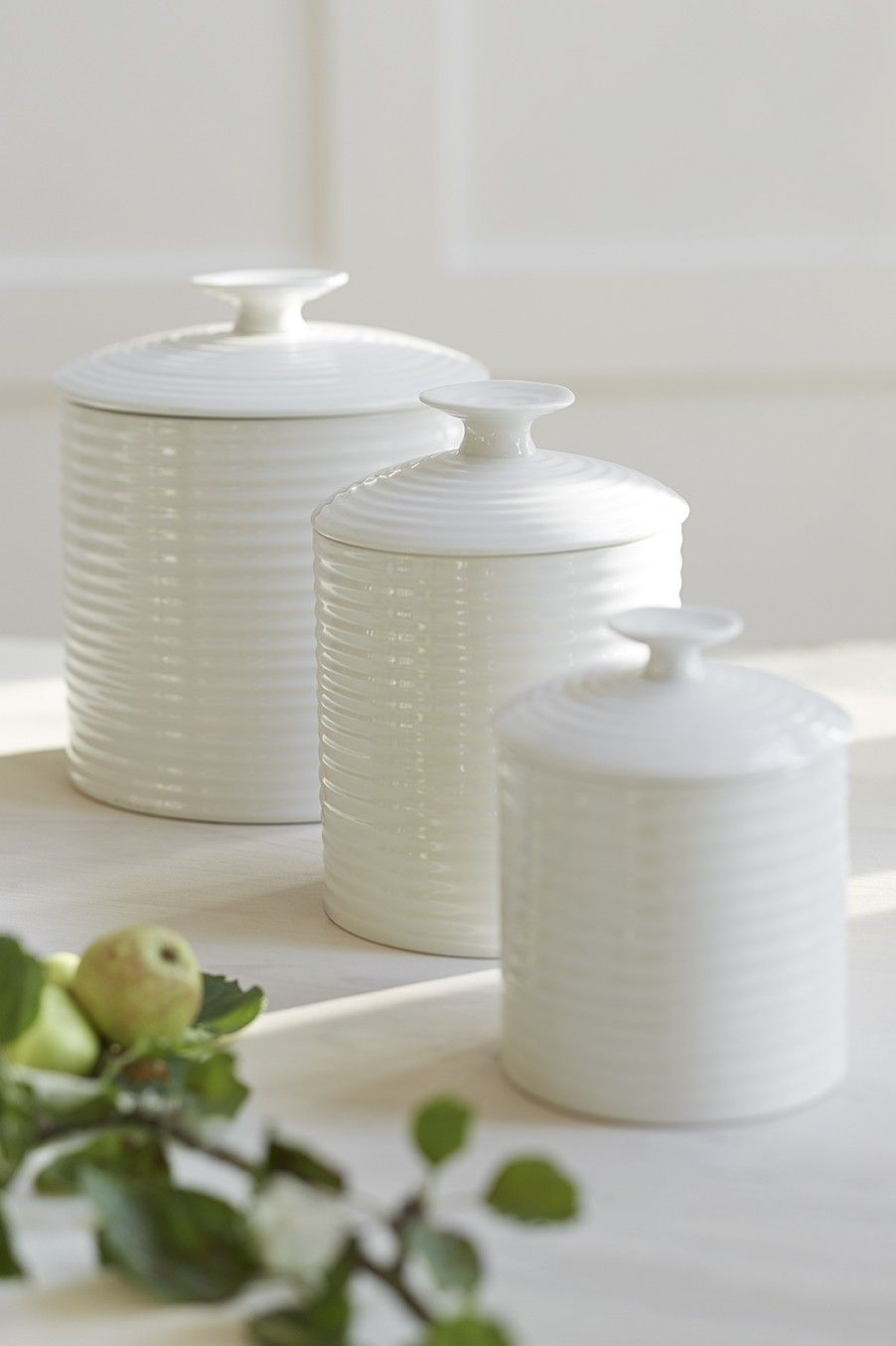 China Kitchen Palm Beach Gardens White Ceramic Storage Jars White China Kitchen Dining