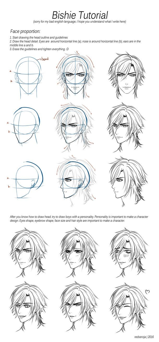 403 Forbidden Head Proportions Bishie Character Design Tutorial