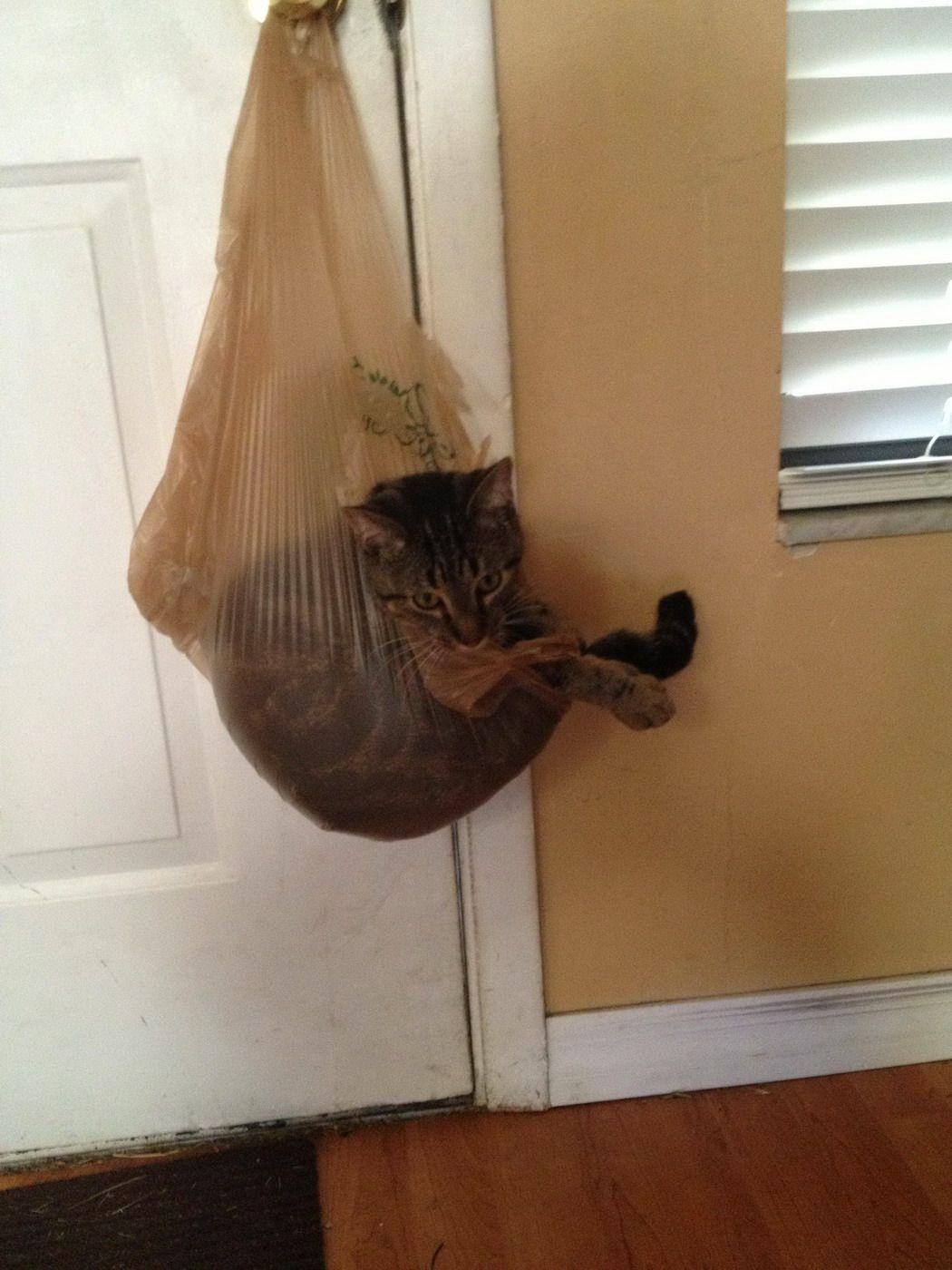 I jus hangin' round