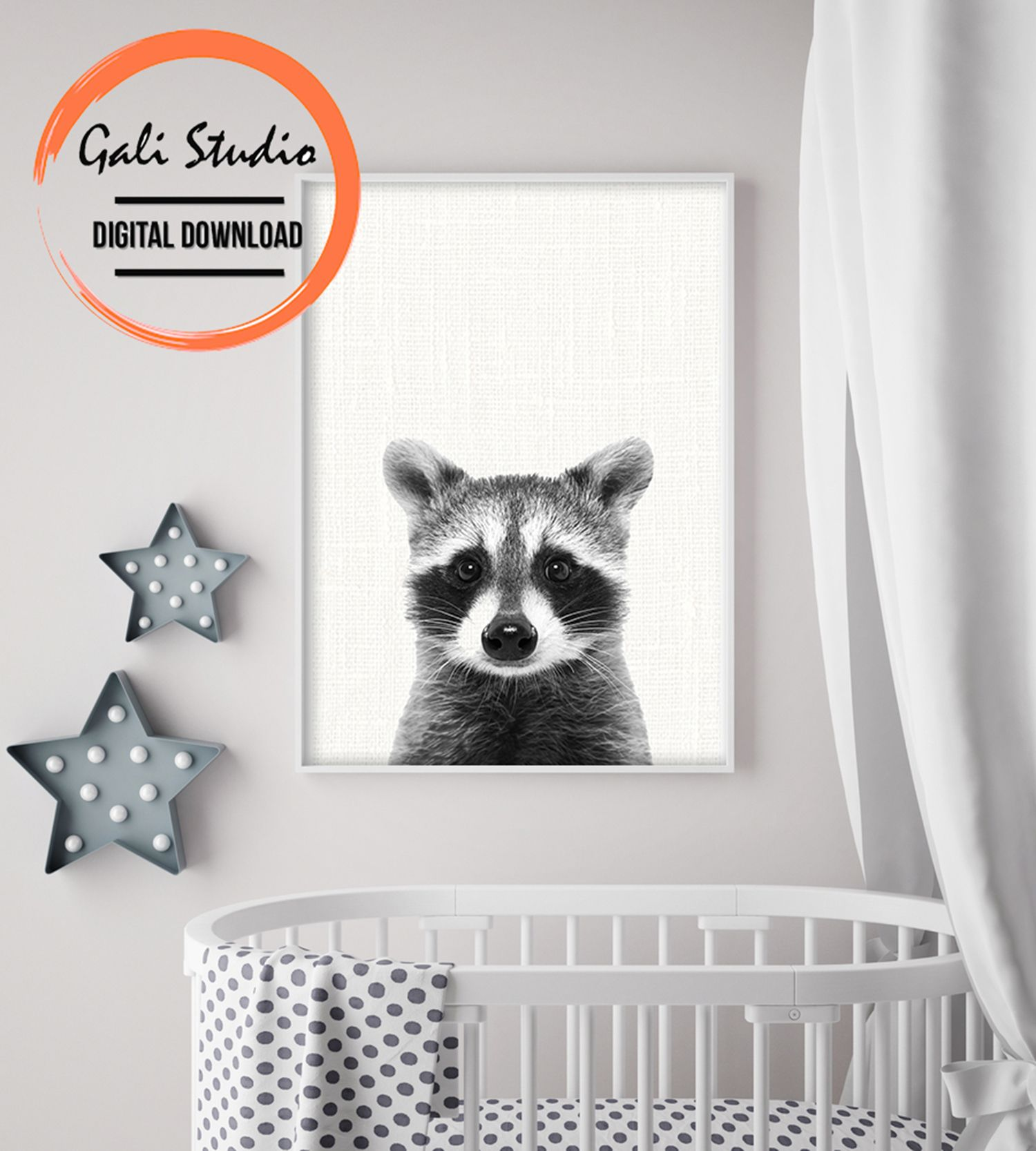 Raccoon Baby Printable Poster For Digital Download