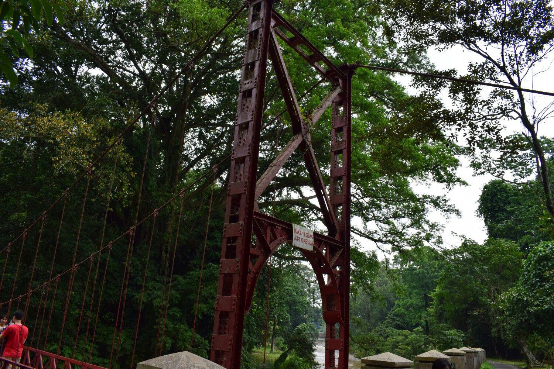 Bogor batanical garden Indonesia