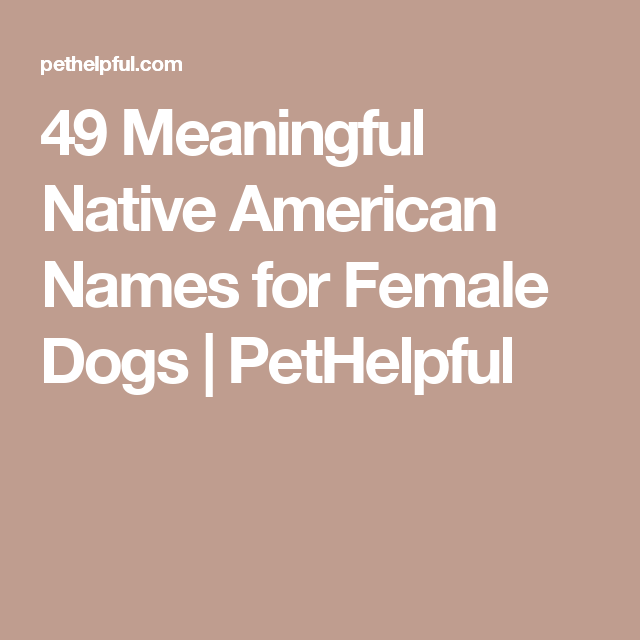 200 Best Native American Names For Female Dogs Female Dog Names