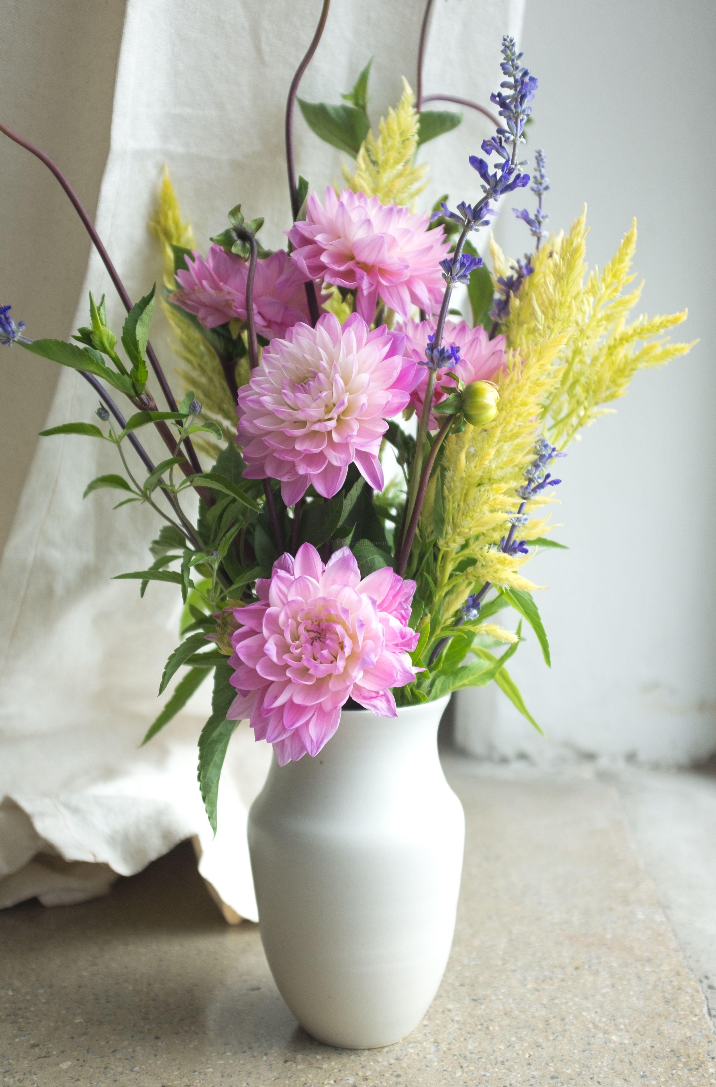 Poet Studio celadon vase with late summer Lancaster County