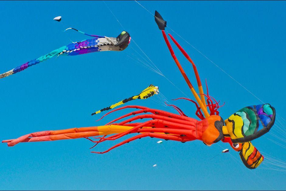 28èmes rencontres internationales de cerfs volants)