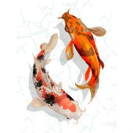 Japanese Koi Pond Poster Zazzle Com In 2020 Koi Art Koi Painting Japanese Koi