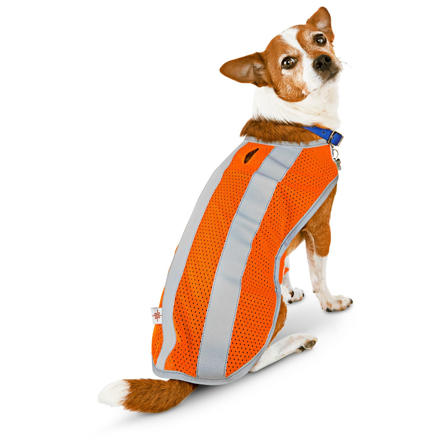 Good2Go Reflective Dog Safety Vest at PETCO