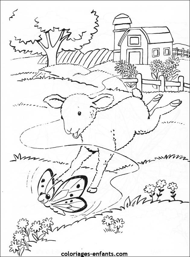 Coloriage d 39 animaux dessin de mouton colorier mouton embroidery 2 colours et design - Dessin d animaux ...