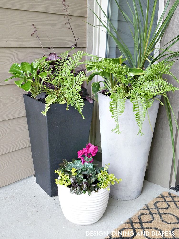 Front porch planter ideas get your porch ready for for Potted plants by front door
