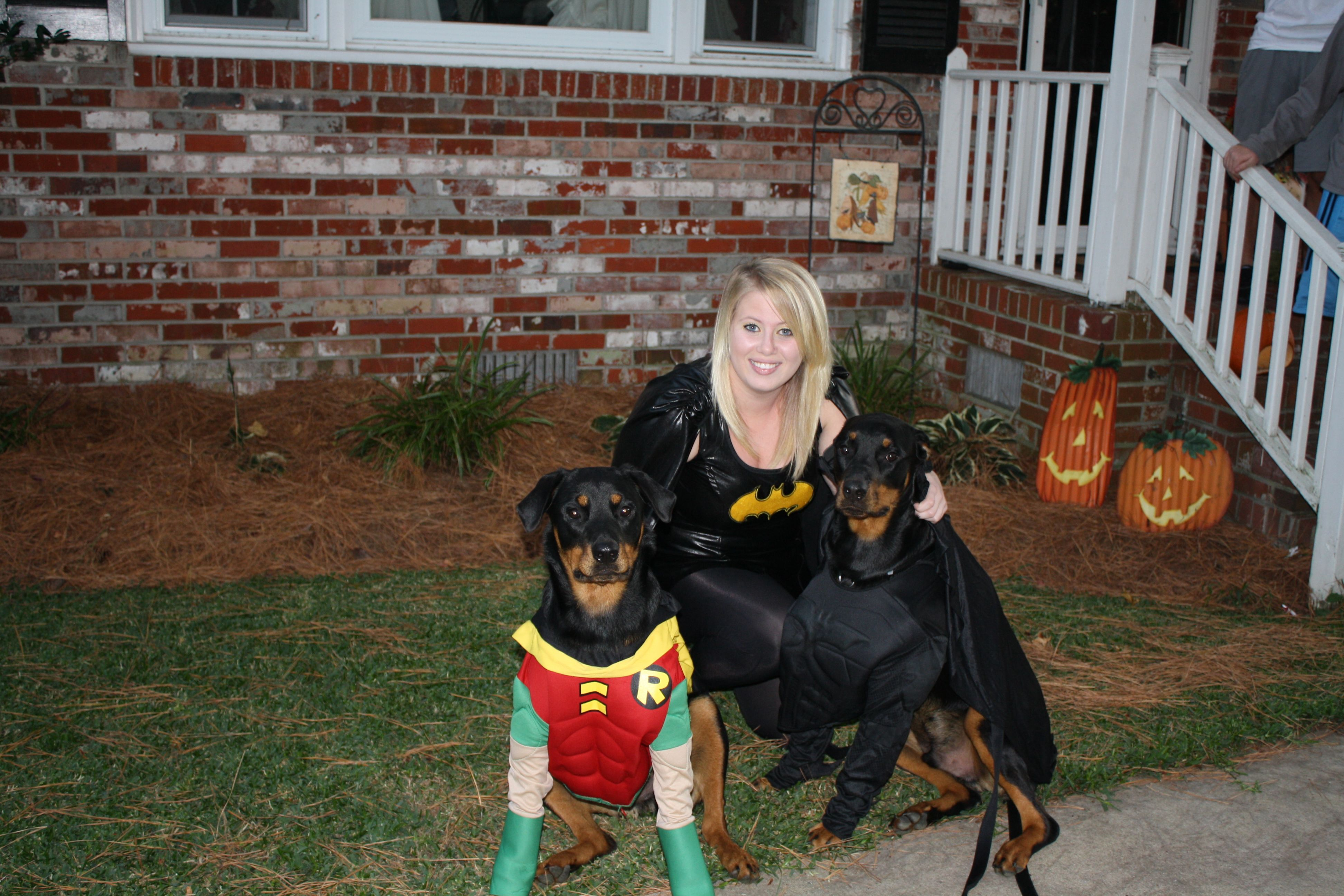 Batman And Robin Bubbas My Two Rottweilers Dressed Up For