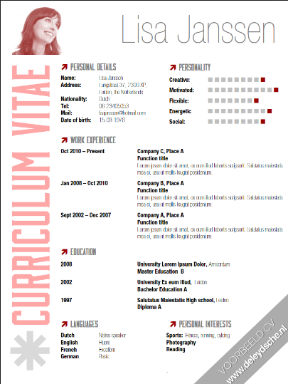 Cv Voorbeeld Solliciteren Cv Design Cv Template En Templates