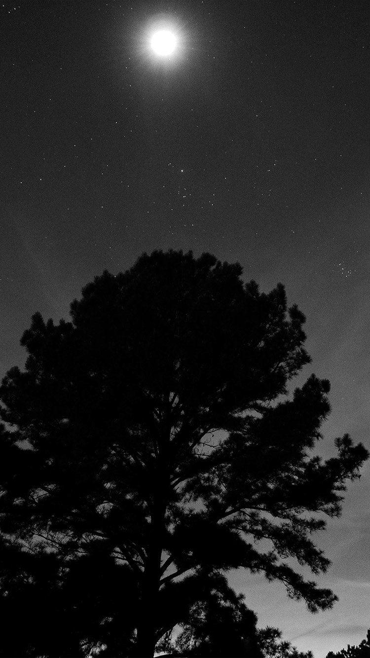 one star shine night dark sky wood bw wallpaper hd iphone
