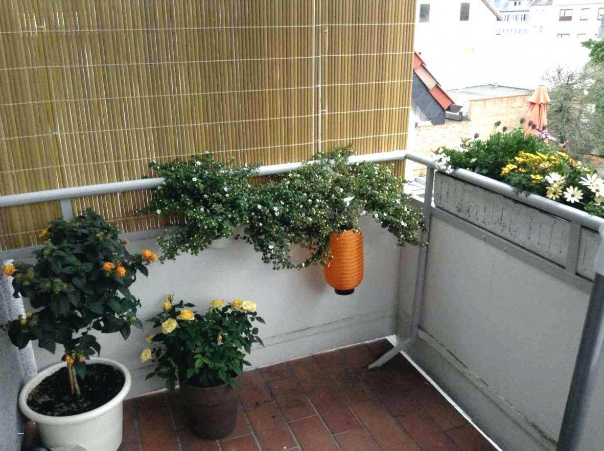 48 Konzept Zum Balkon Gestalten Mit Wenig Geld Garten