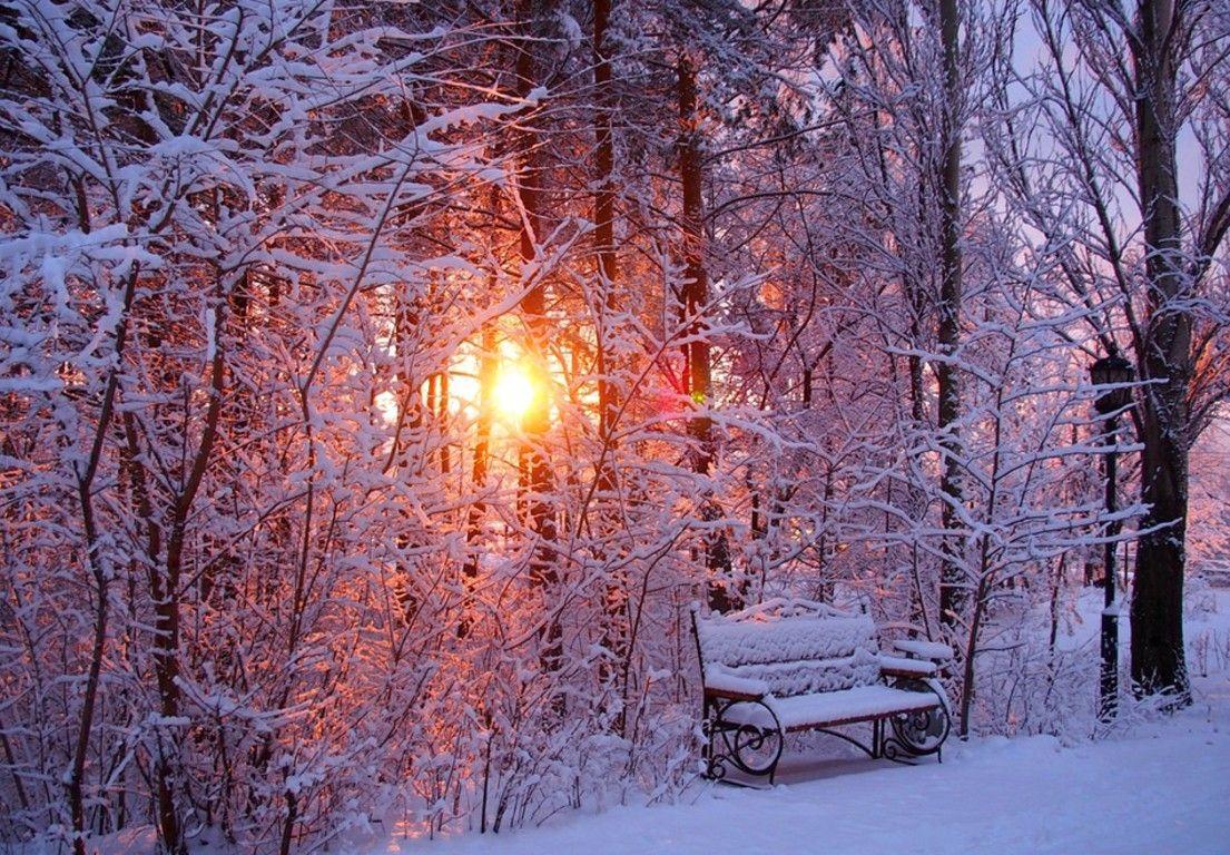 Most Inspiring Wallpaper Mac Winter - 8a9e09b011d3294a88c1986931a64b32  Graphic_599054.jpg