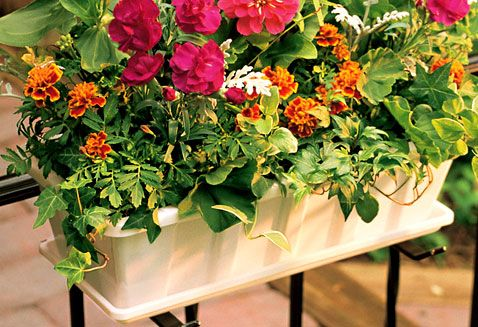 Poly-Pro Liners » Flowerbox Planters » Products » Novelty Manufacturing #noveltymfg