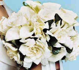 Gardenia And Calla Lilies