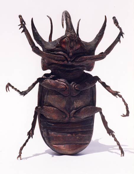 rhinoceros beetle sculpture eupatorus gracilicornis bugs