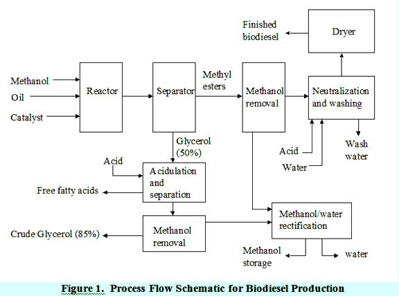 Process Flow Schematic For Biodiesel Production Biodiesel