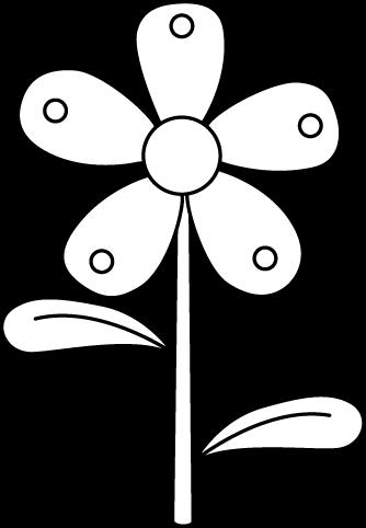 Black And White Garden Flower White Flowers Garden Parts Of A Flower White Gardens