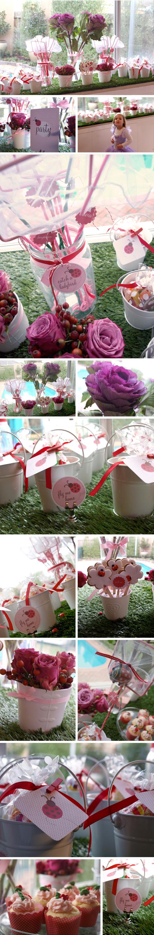 Alannah Rose Party   Ellas Lovely {ladybird} Garden Party (ladybugs)