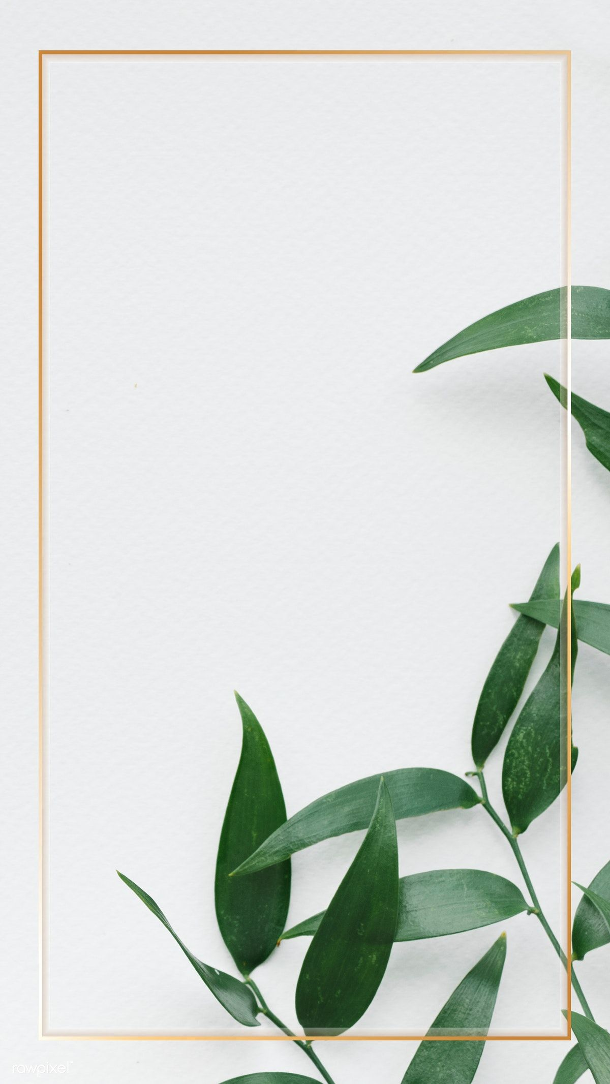 Download Premium Psd Of Gold Frame Over Green Leaves On A White Wall In 2020 Green Leaf Wallpaper Leaves Wallpaper Iphone Green Wallpaper