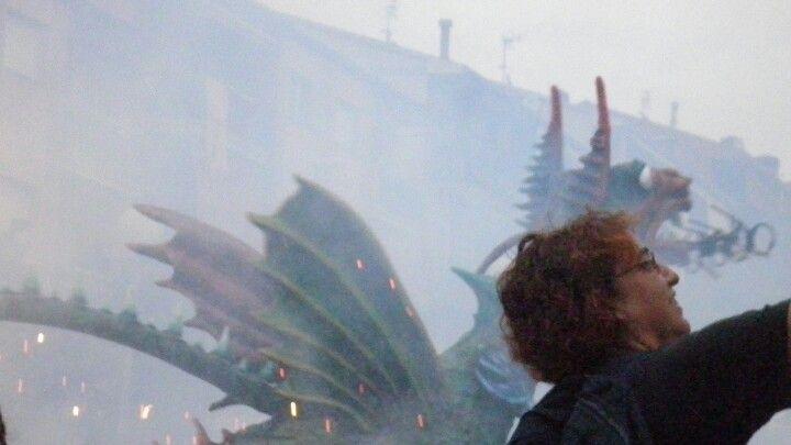 Els dracs,,,,,,dragons.............