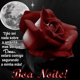 Flores E Frases Boa Noite Greetings Mensagem De Boa