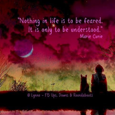 Life Quote Via Ups Downs Roundabouts At Www Facebook Com Upsdownsroundabouts Downs Life Quotes Marie Curie