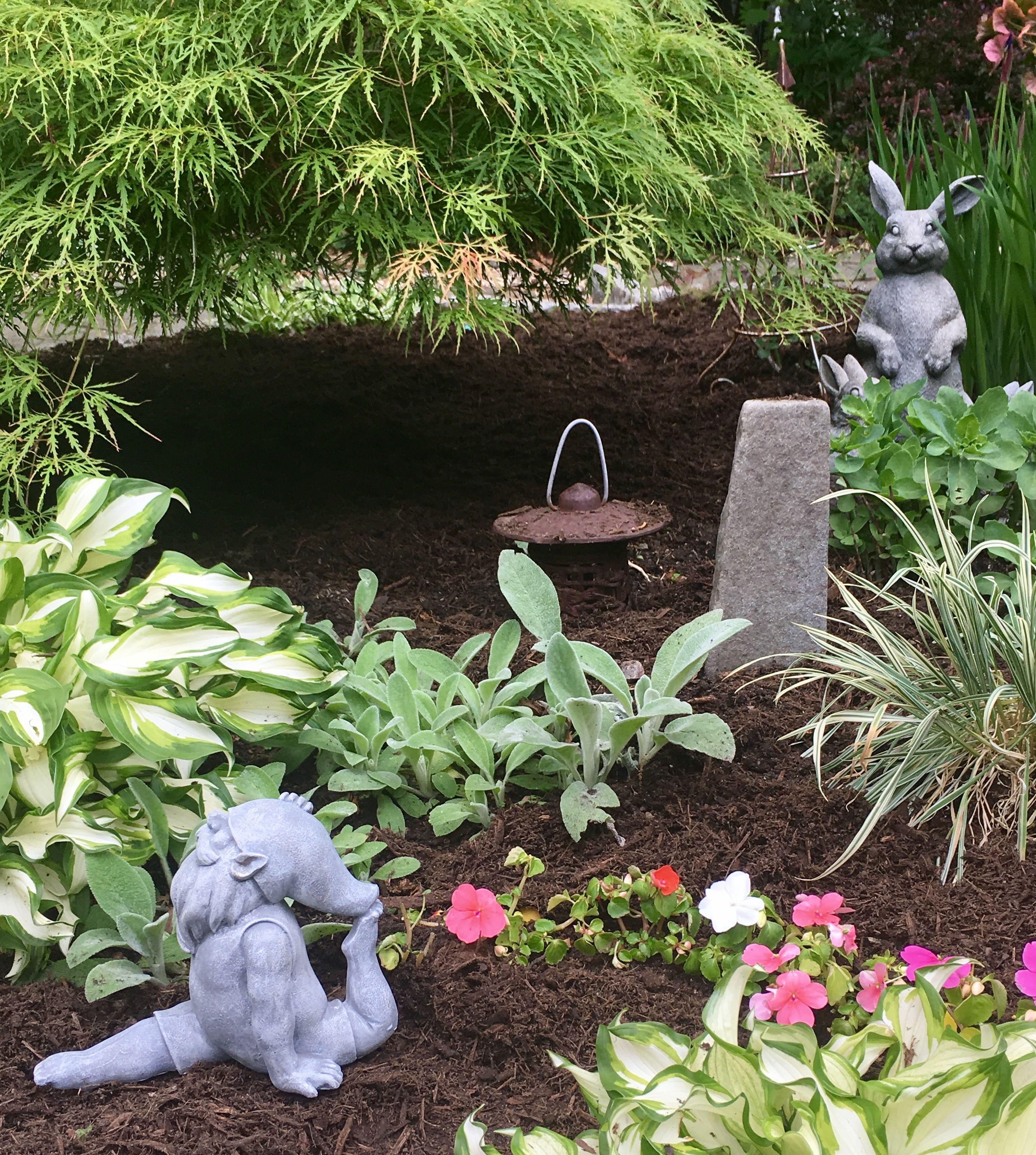 Zen Gardens, Gardening, Garden, Yard Landscaping, Urban Homesteading, Horticulture